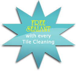 pool tile cleaning sealant mesa az